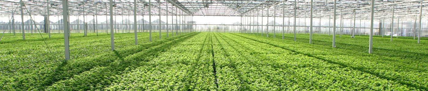 3_7_2_application_greenhouses_1400x298.jpg