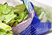 Modified Atmosphere Packaging Lettuce